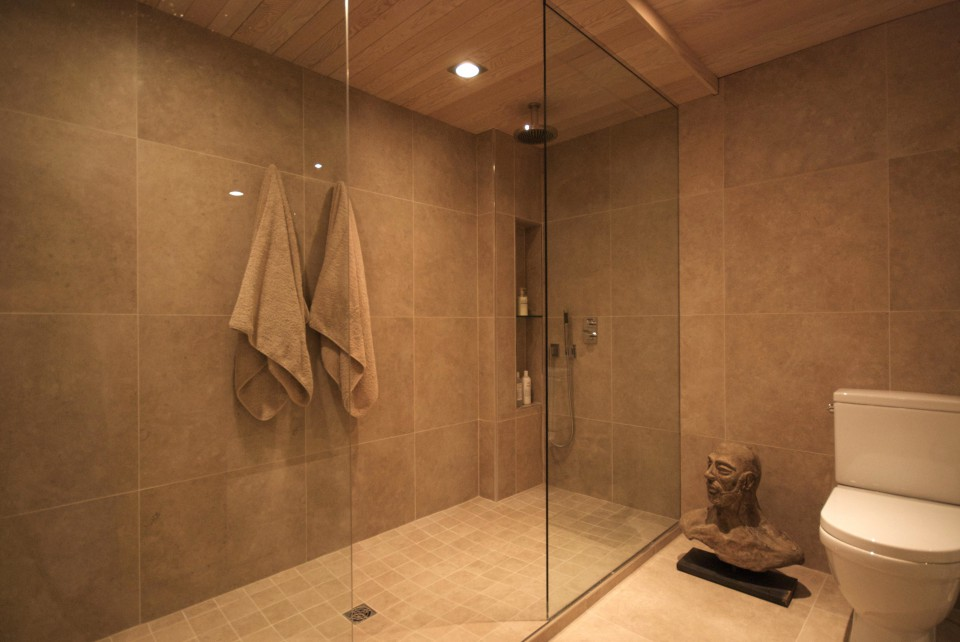 Elegant walk-in shower
